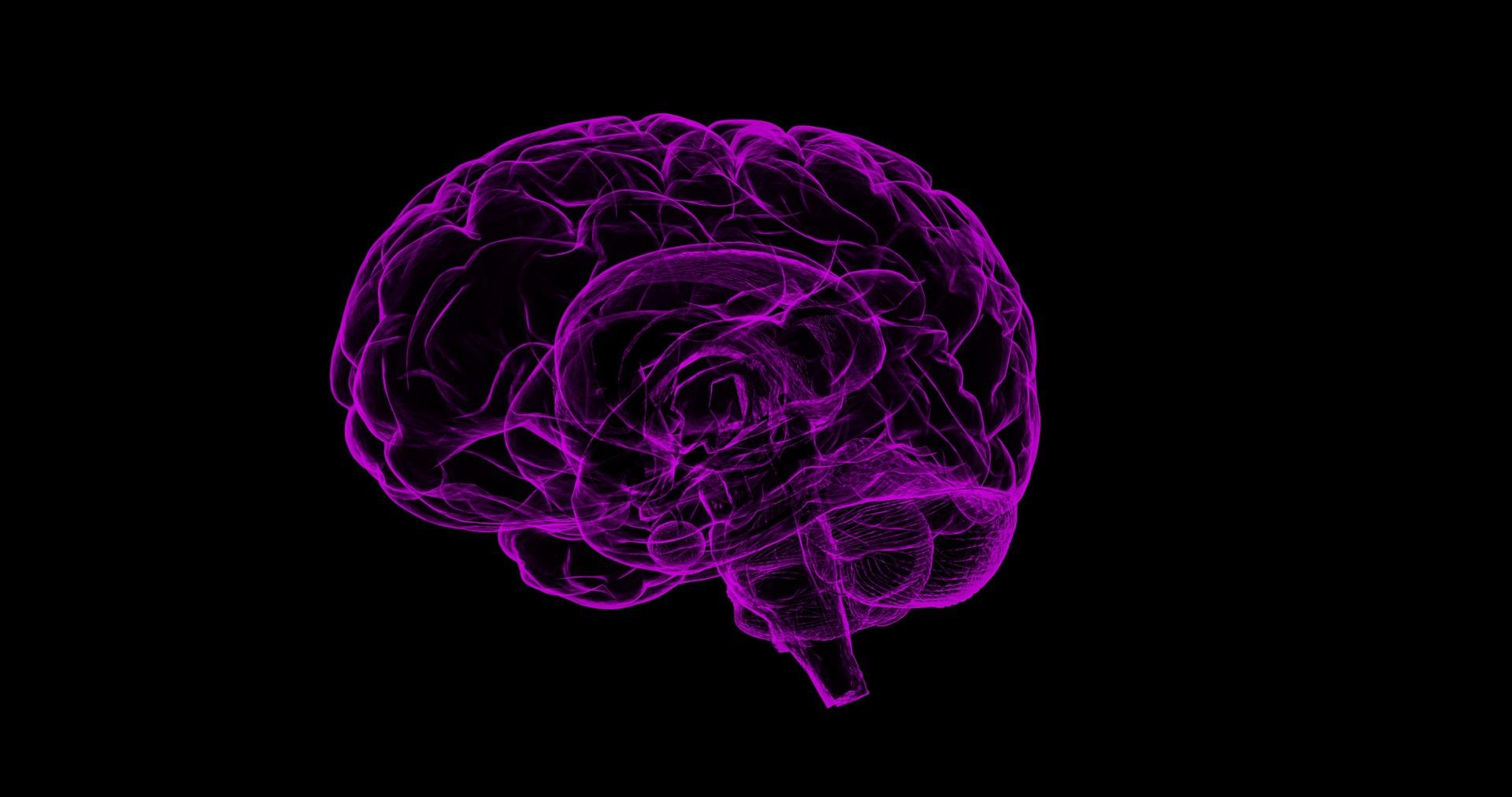 Nominations Open for Joseph Altman Award in Developmental Neuroscience
