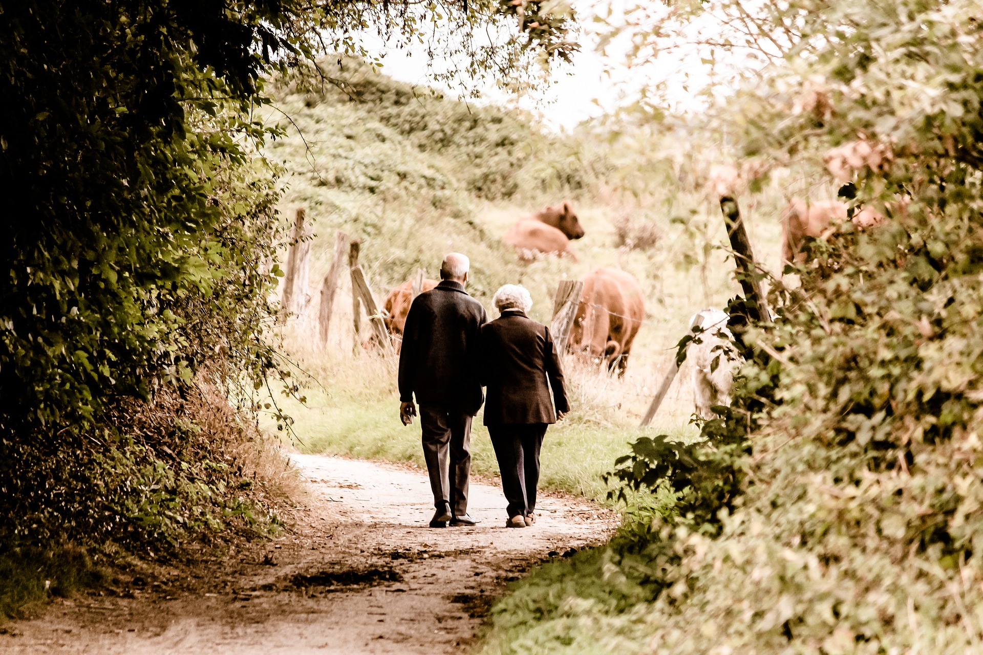 Joint UK/China Call on Health and Social Challenges for Ageing in the UK and China
