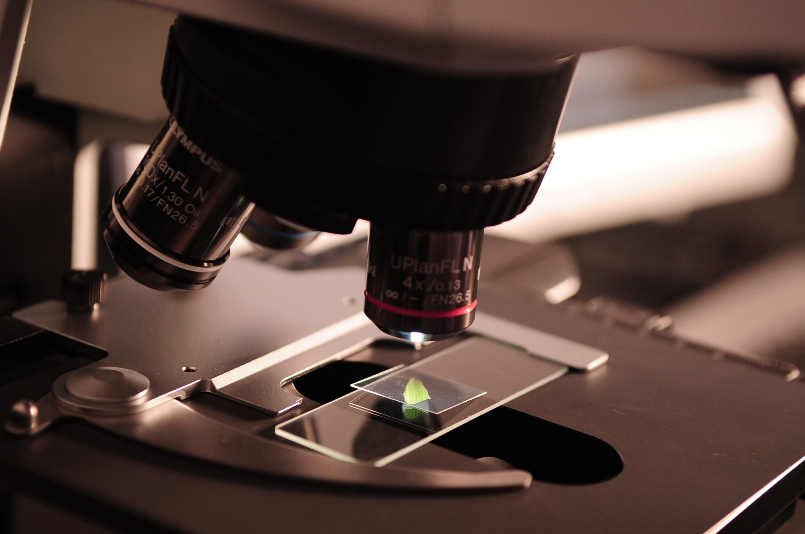 Gilead Sciences Research Scholars Cystic Fibrosis Program Open to Applications