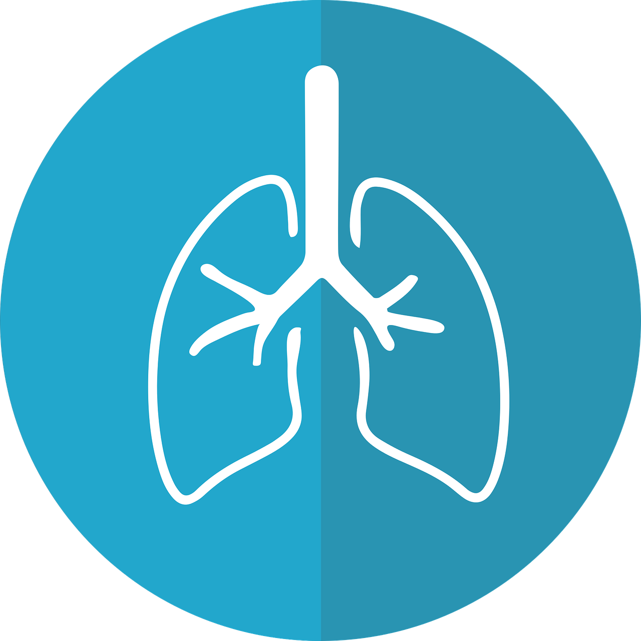 Asthma Health Technology Fund Open for Applications