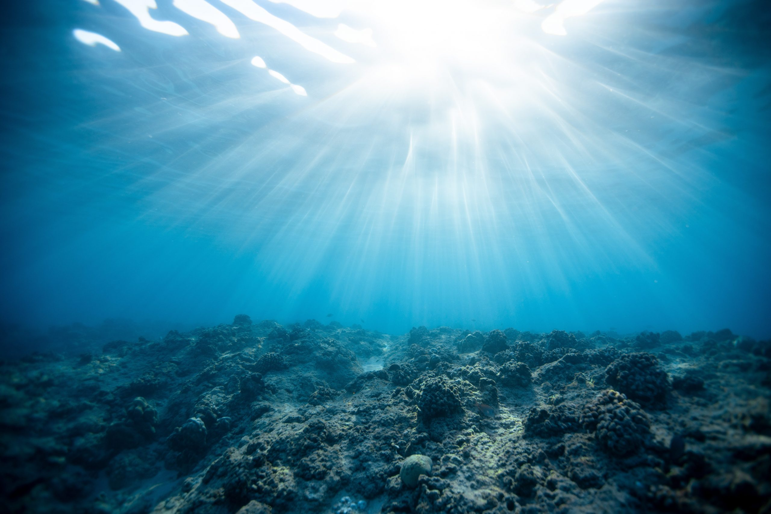 Applications Invited for New Sustainable Management of UK Marine Resources (SMMR) Research Programme