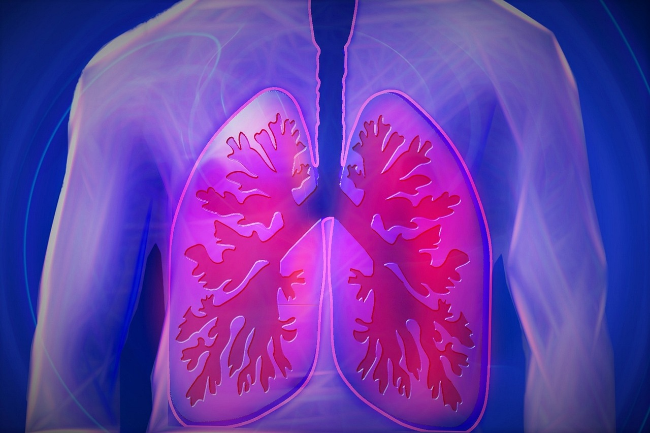 British Lung Foundation Funds Now Open