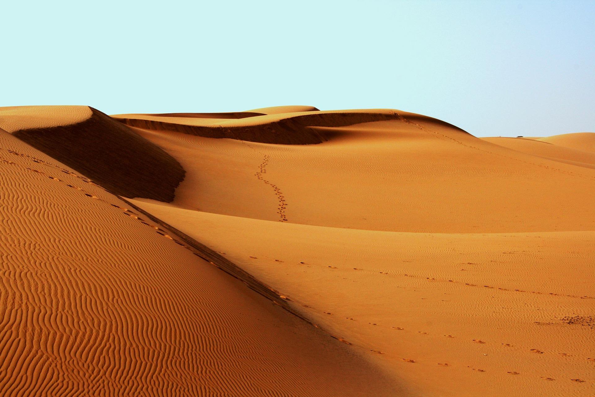British Academy Seeks Participation in Virtual Sandpits 2021